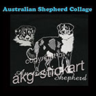 australian_shepherd_collage_wz_350_150cp