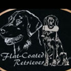 flat_coated_retriever_130_150cp